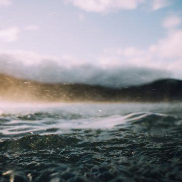 פרשת נח באור הקבלה והחסידות / עריכה: דוד אגמון