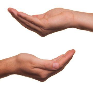 פרשת תרומה באור הקבלה והחסידות / עריכה: דוד אגמון